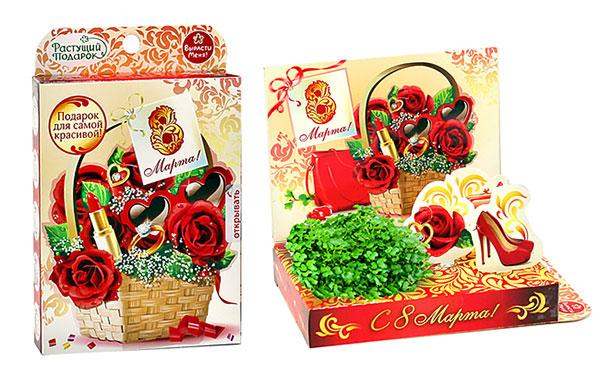 Живая открытка «Для самой красивой. Красные розы»