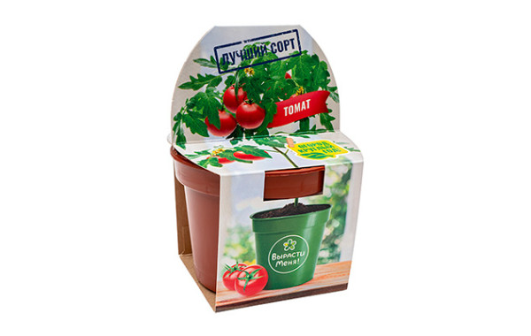 Томат — «Огород круглый год!»